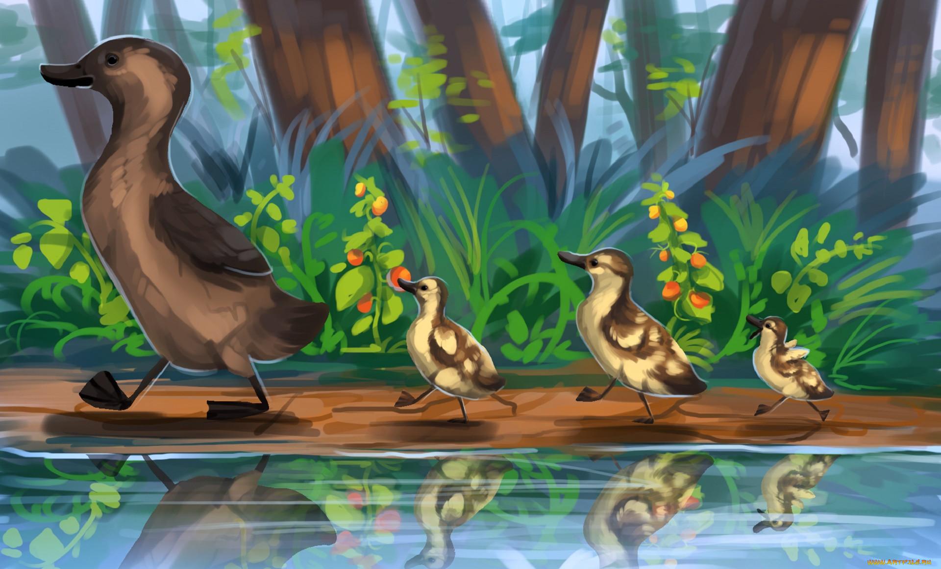 рисованное, животные, утка, утята, природа